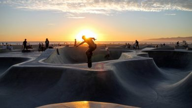 Things to Do in Venice (CA)
